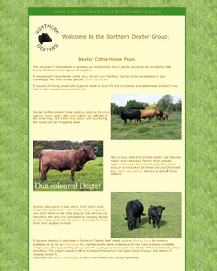 Northern Dexter Group