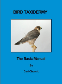 Carl Church Taxidermy book, manual